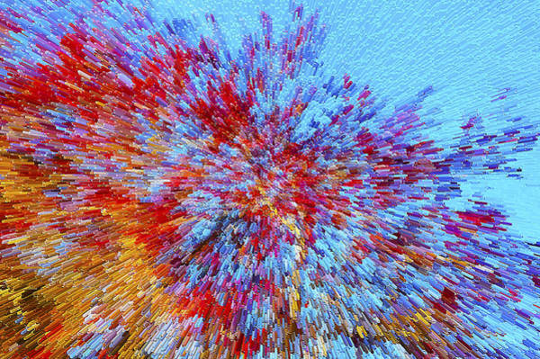Photograph - Red Maples Against A Blue Sky by Gerald Grow