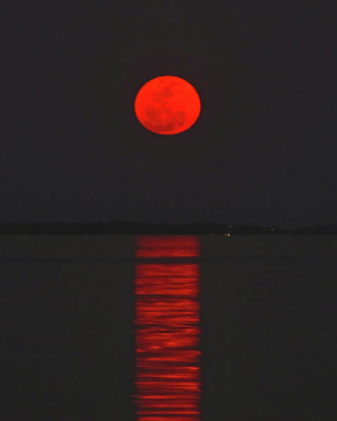 Red Moon Rising  Art Print