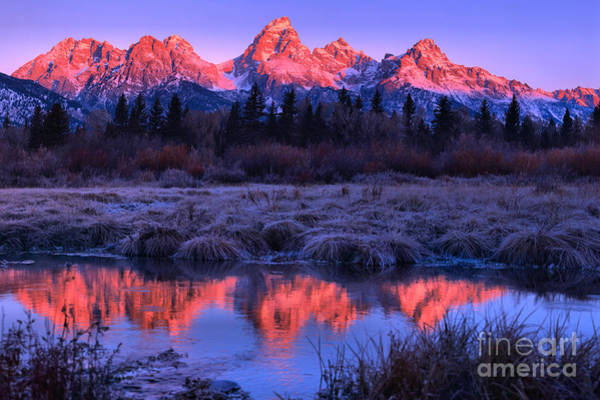 Photograph - Red Morning Teton Peaks Landscape by Adam Jewell