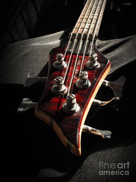 Photograph - Red Neck Traben  by Vivian Martin