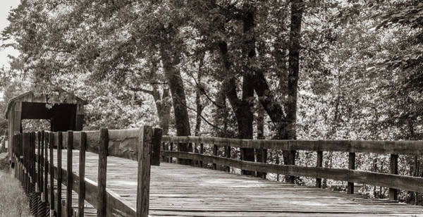 Photograph - Red Oak Creek Covered Bridge Approach by Randy Bayne