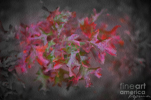 Hillary Clinton Photograph - Red Oak Leaves, Grapevine Texas by Greg Kopriva