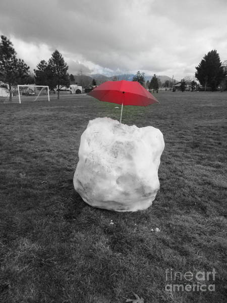 Photograph - Red On Ice by Marie Neder
