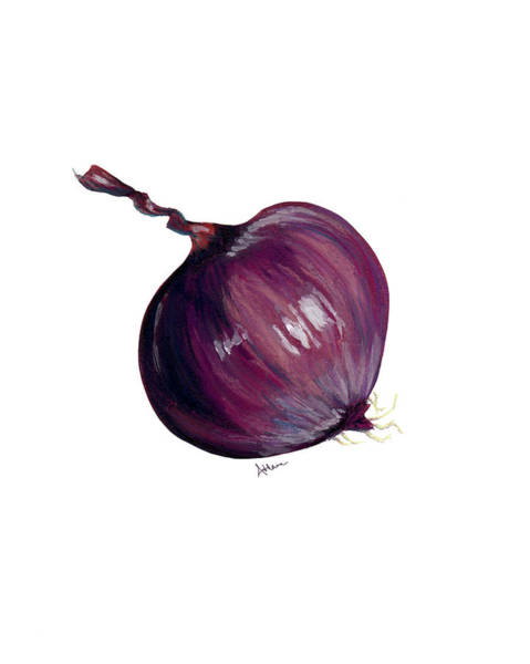 Pastel - Red Onion by Athena Lutton
