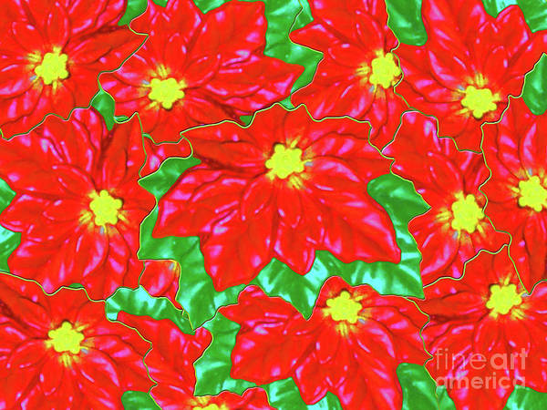 Photograph - Red Orange Poinsettias by Rockin Docks Deluxephotos