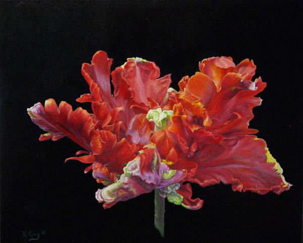 Wall Art - Painting - Red Parrot Tulip - Oils by Roena King