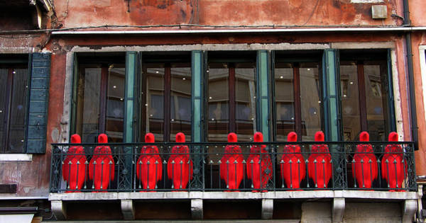 Photograph - Red Penguins In Venice by Mary Capriole