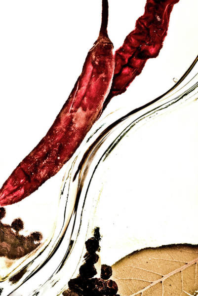 Photograph - Red Pepper And Bay Leaf by  Onyonet  Photo Studios