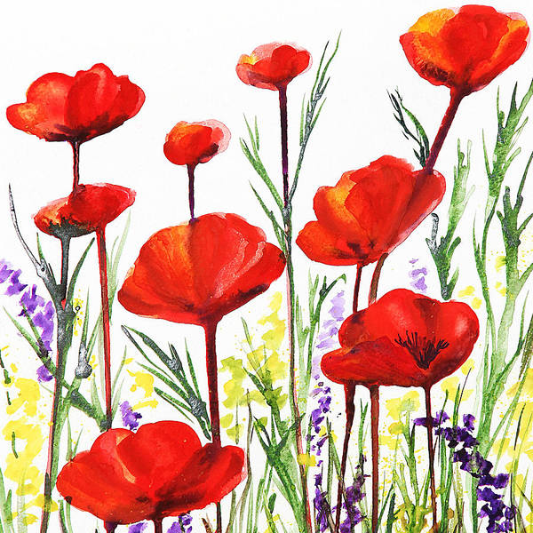 Country Style Painting - Red Poppies Art By Irina Sztukowski by Irina Sztukowski