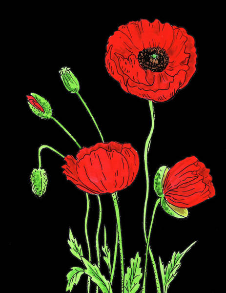 Botanic Painting - Red Poppy Flowers Watercolour by Irina Sztukowski