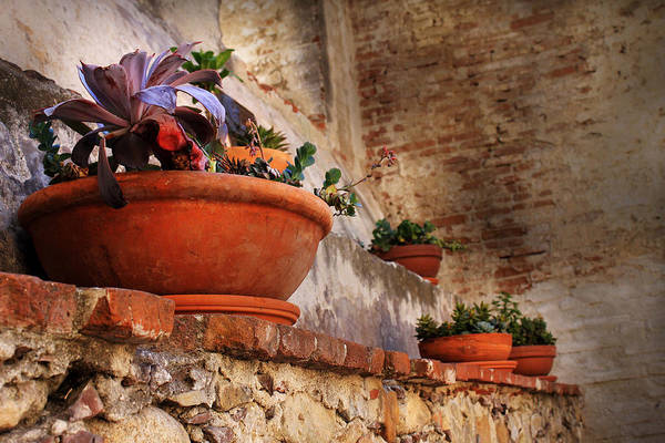 Photograph - Red Pot by Maria Reverberi