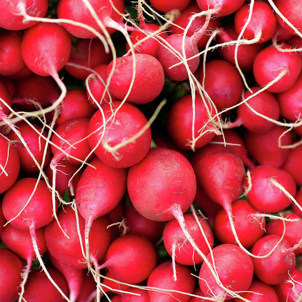 Wall Art - Photograph - Red Radishes by Todd Klassy