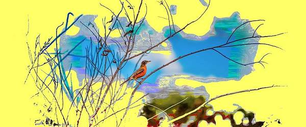 Photograph - Red Red Robin Mug Shot 2 by John M Bailey