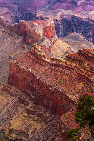 Photograph - Red Ridge At The Canyon by Ed Gleichman