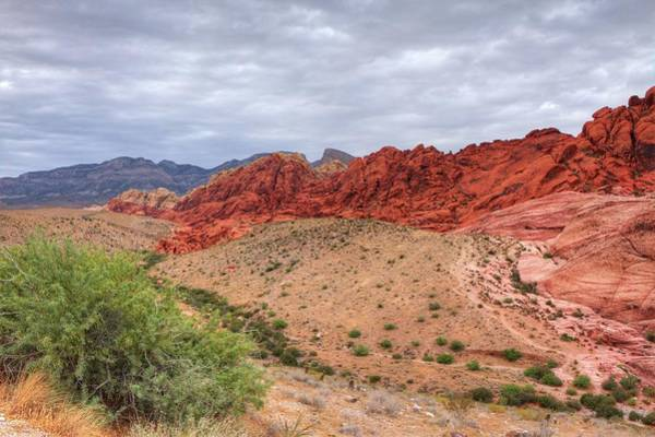 Photograph - Red Rock 3 by Ree Reid