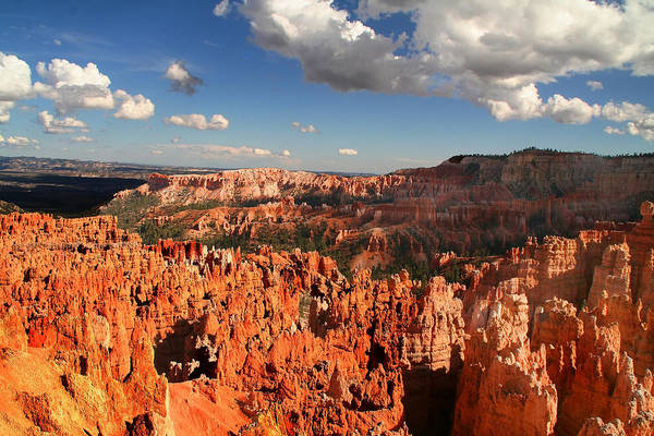 Photograph - Red Rock Bryce Canyon National Park by Mark Smith