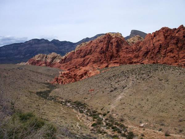 Photograph - Red Rock Canyon 1 by Anita Burgermeister