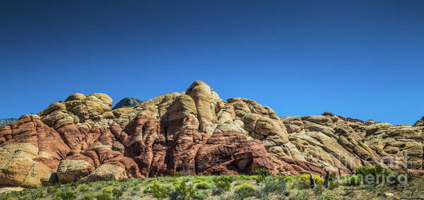 Photograph - Red Rock Canyon #11 by Blake Webster