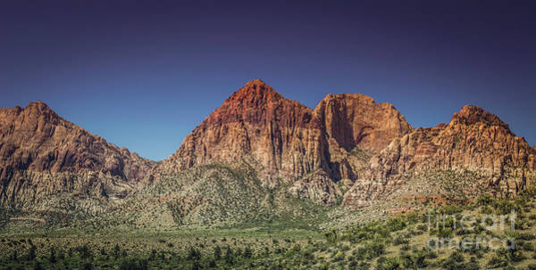 Photograph - Red Rock Canyon #20 by Blake Webster
