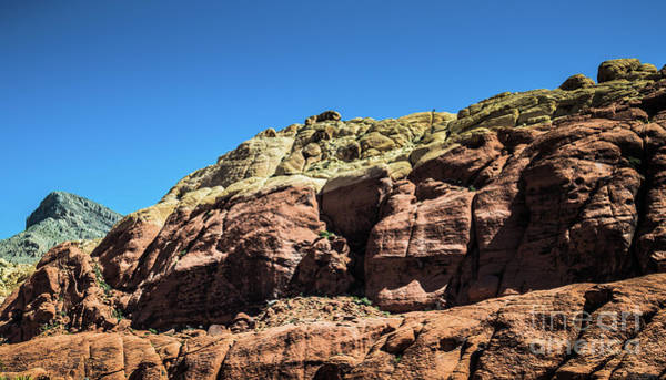 Photograph - Red Rock Canyon #9 by Blake Webster