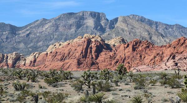 Photograph - Red Rock Canyon  by Christy Pooschke
