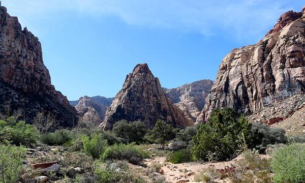 Photograph - Red Rock Canyon National Conservation Area  by Christy Pooschke