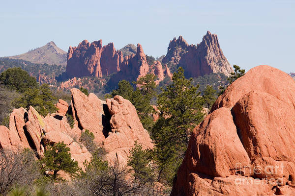 Red Rock Canyon Open Space Park And Garden Of The Gods Art Print