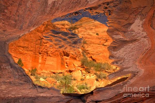 Photograph - Red Rock Canyon Reflections by Adam Jewell