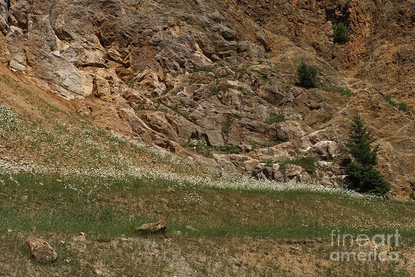 Photograph - Red Rock Canyon Walls by Charles Kozierok