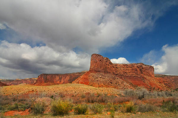 Photograph - Red Rock Canyonlands National Park by Mark Smith