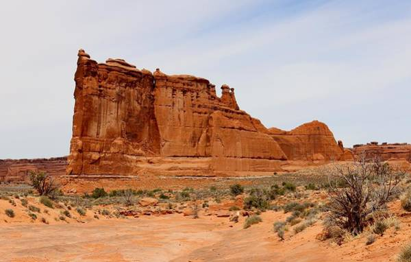 Photograph - Red Rock Fins - 3 by Christy Pooschke