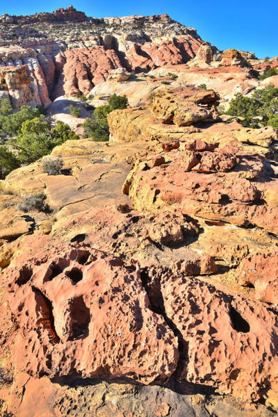 Photograph - Red Rock Steps by Ray Mathis