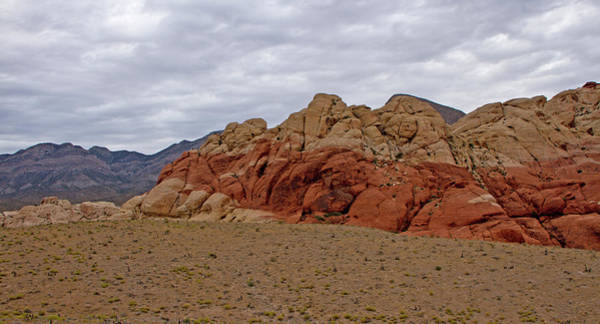 Photograph - Red Rock Too by Ree Reid