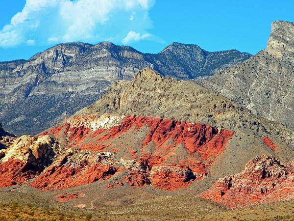 Photograph - Red Rocks Nevada by Frank Wilson