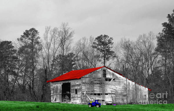 Photograph - Red Roof Barn by Diana Mary Sharpton