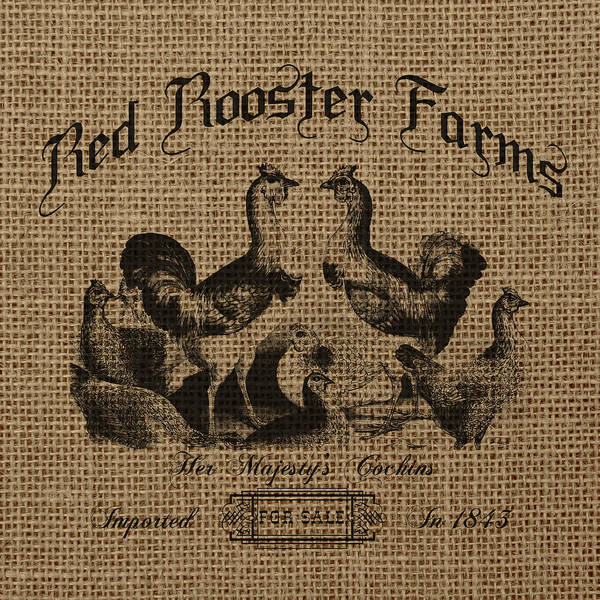 Wall Art - Digital Art - Red Rooster Farms Burlap by Brandi Fitzgerald