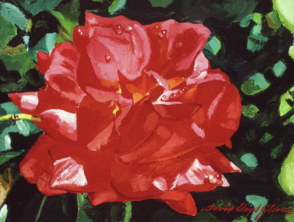 Painting - Red Rose Dewdrops by David Lloyd Glover