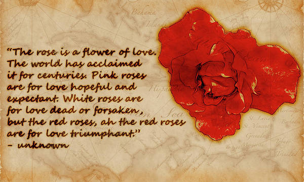 Digital Art - Red Rose Significance by Jason Fink