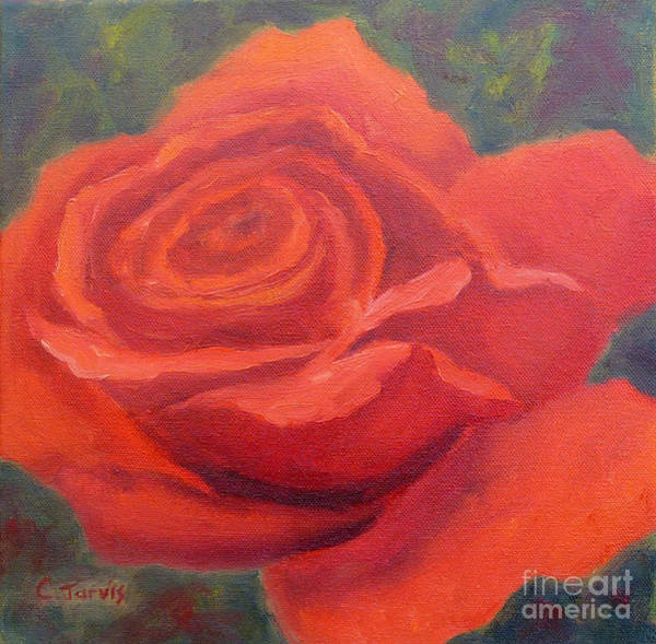 Painting - Red Rose Squared by Carolyn Jarvis