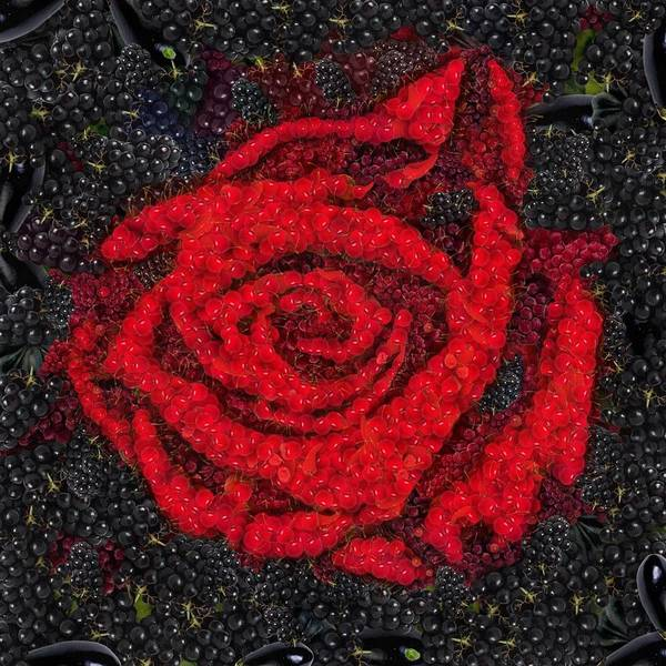 Digital Art - Red Rose Vegged Out by Catherine Lott