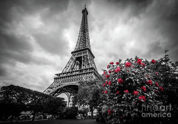 Wall Art - Photograph - Red Roses At Eiffel Tower Garden, Paris by Liesl Walsh
