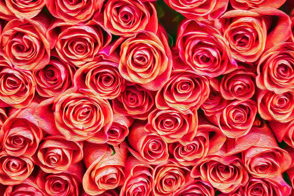Photograph - Red Roses Wall Decoration Fine Art by John Williams