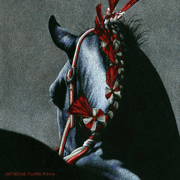 Equine Drawing - Red Rosettes by Katherine Plumer