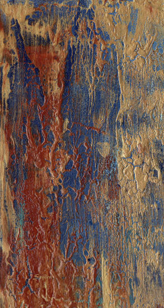 Painting - Red Sandy Beach Detail by Barbara Snyder