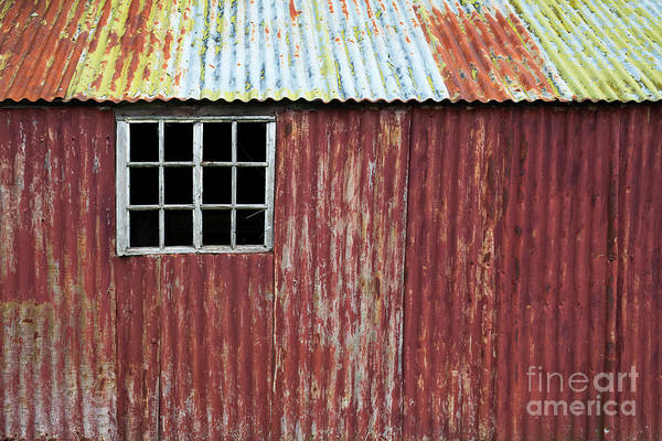 English Countryside Photograph - Red Shed by Tim Gainey