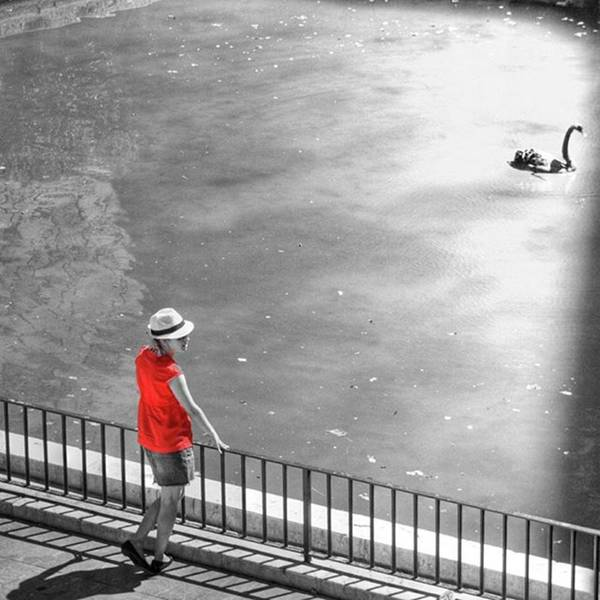 Blackandwhite Wall Art - Photograph - Red Shirt, Black Swanla Seu, Palma De by John Edwards