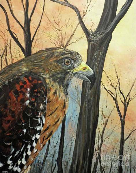 Painting - Red Shouldered Hawk At The Chattahoochie Nature Center In Roswell Ga  by Lizi Beard-Ward