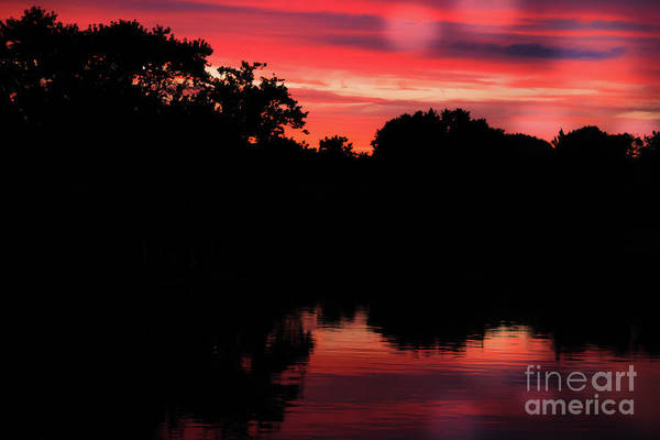 Wall Art - Photograph - Red Silhouette Sunset by Colleen Kammerer