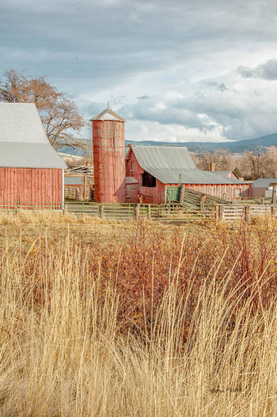 Photograph - Red Silo  Barn by Ramona Murdock