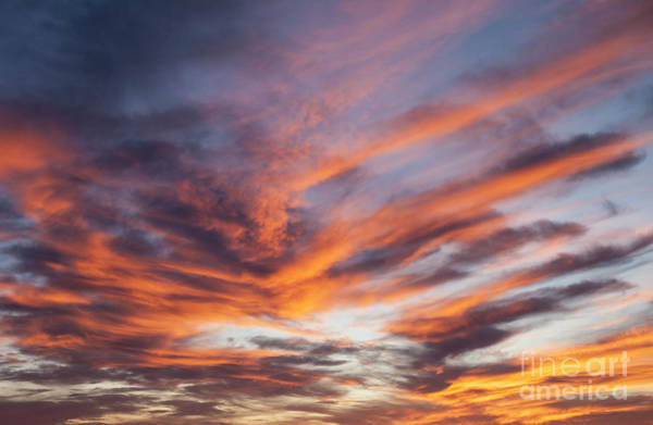 Wall Art - Photograph - Red Sky by Timothy Johnson